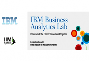 IIM-IBM-ANALYTICPEDIA2013